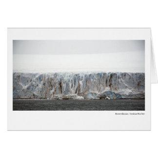 Glaciar del bravo, puerto del yanqui tarjeta