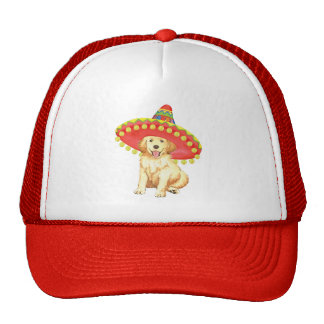 Golden retriever de la fiesta gorros