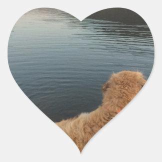 Golden retriever en una roca en el lago pegatina en forma de corazón