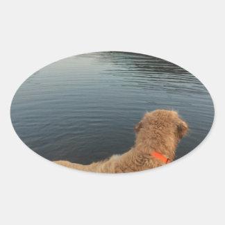 Golden retriever en una roca en el lago pegatina ovalada