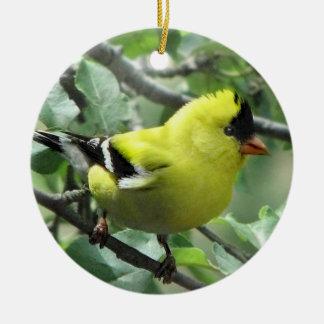 Goldfinch Ornamentos De Navidad