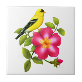 Goldfinch americano en la baldosa cerámica color azulejo cuadrado pequeño
