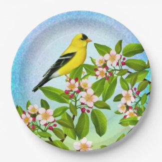Goldfinch americano en las placas de papel de los plato de papel