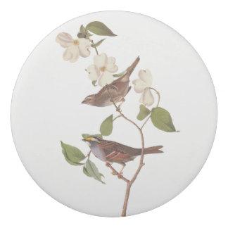 Goma De Borrar Arte Throated blanco de Audubon del vintage del