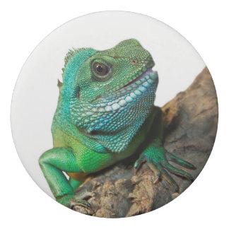 Goma De Borrar Iguana verde