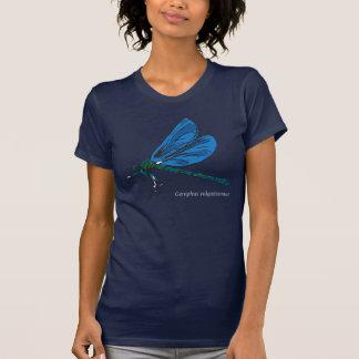Gomphus Vulgatissimus o camiseta de la libélula de