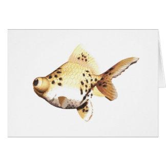 Google observó el Goldfish 4 Felicitaciones
