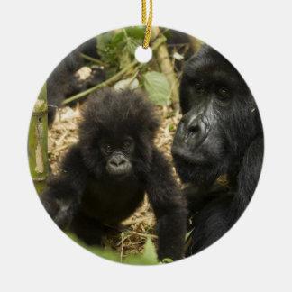 Gorila de montaña, adulto con los jóvenes adorno redondo de cerámica