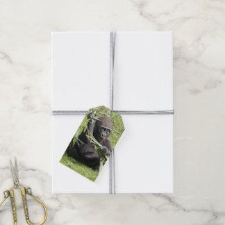 Gorila joven lindo etiquetas para regalos