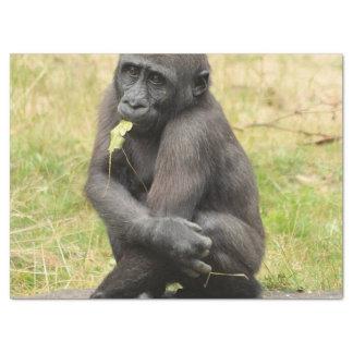 Gorila joven lindo papel de seda