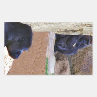 Gorillas_ Pegatina Rectangular