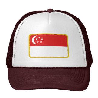 Gorra bordado bandera del efecto de Singapur