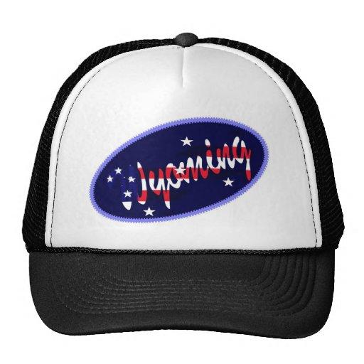 Gorra bordado los E.E.U.U. del efecto de Wyoming