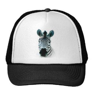 Gorra con la cabeza de la cebra fuera de África