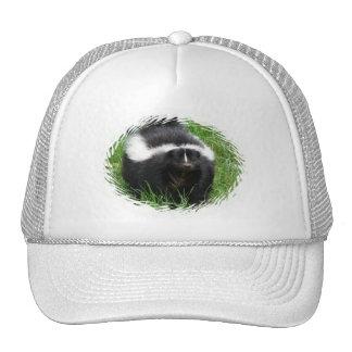 Gorra de béisbol de la foto de la mofeta