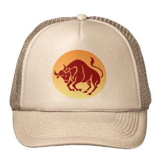 Gorra de Bull