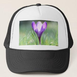 Gorra De Camionero Azafrán púrpura en primavera