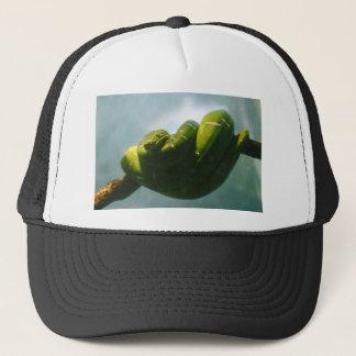 Gorra De Camionero Boa verde del árbol