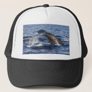 Gorra De Camionero Cola de la ballena