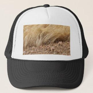 Gorra De Camionero Detalle de un campo del teff durante cosecha