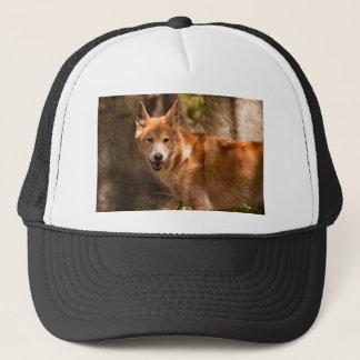 Gorra De Camionero Dingo australiano