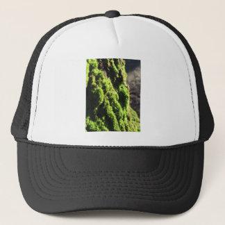 Gorra De Camionero El musgo verde en el detalle de la naturaleza del
