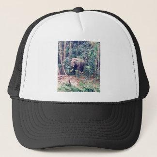 Gorra De Camionero Elefante en Tailandia