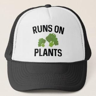 Gorra De Camionero Funcionamientos en las plantas