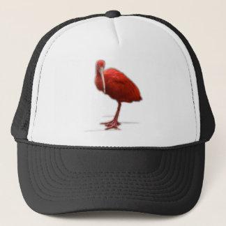 Gorra De Camionero Ibis rojo da esto al amante del pájaro en su vida
