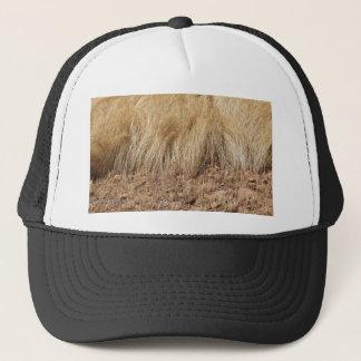 Gorra De Camionero iDetail de un campo del teff durante cosecha