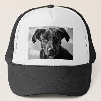 Gorra De Camionero Mascota canino del perro