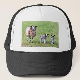 Gorra De Camionero Mime a las ovejas con dos corderos recién nacidos