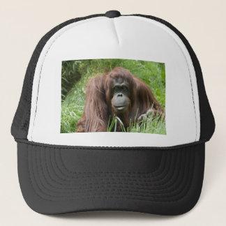 Gorra De Camionero Orangután