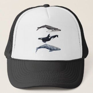 Gorra De Camionero Orca, ballena jorobada y ballena gris