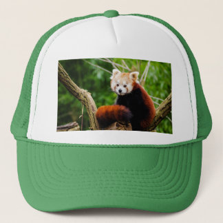 Gorra De Camionero Oso de panda roja lindo