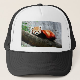 Gorra De Camionero panda roja animal divertida linda