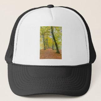 Gorra De Camionero Sendero en el bosque cubierto con las hojas caidas