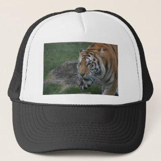 Gorra De Camionero tigre