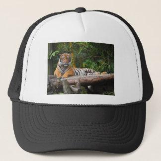 Gorra De Camionero Tigre del Malay de los alquileres que gandulea en