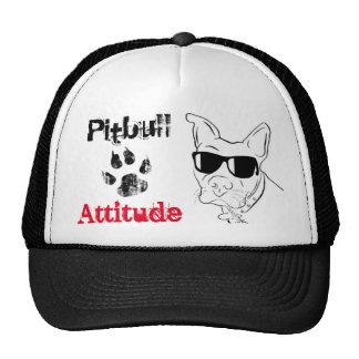 Gorra de la actitud de Pitbull