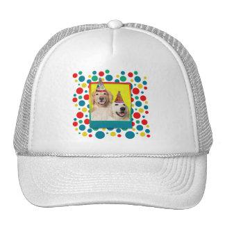 Gorra de la fiesta de cumpleaños - corona de Tebow