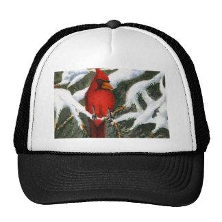 Gorra de la pintura de la nieve