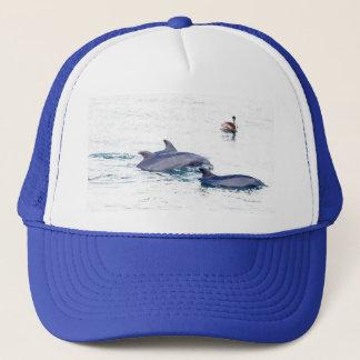 Gorra de los delfínes de Bottlenose