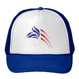 Gorra de lujo de la bandera