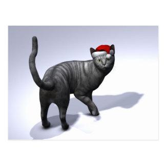 Gorra de plata de Papá Noel del Tabby Postal