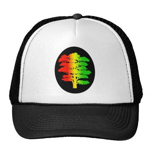 Gorra del árbol de Rasta