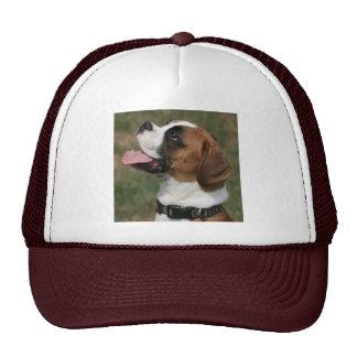 Gorra del camionero de la foto del perro del boxea