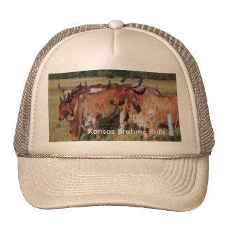 Gorra del camionero de los toros de Kansas Brahma