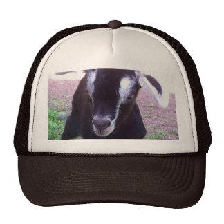 Gorra del camionero del granjero de la cabra