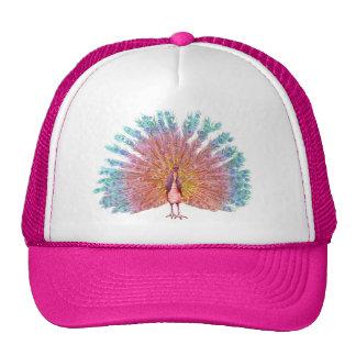 Gorra del camionero del pavo real
